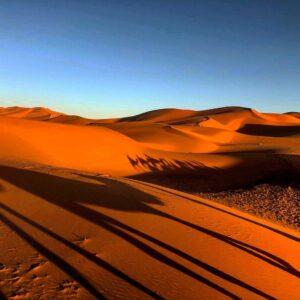 Ombre Nel Deserto