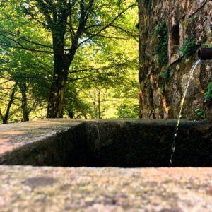 Acqua Donzella
