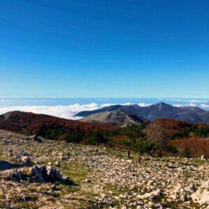 Monte Petrella