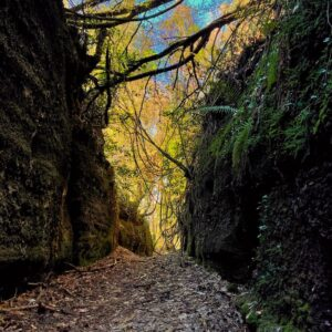 Grotte Cave