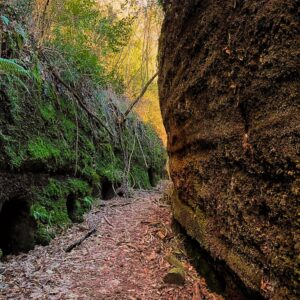 Rotte Cave