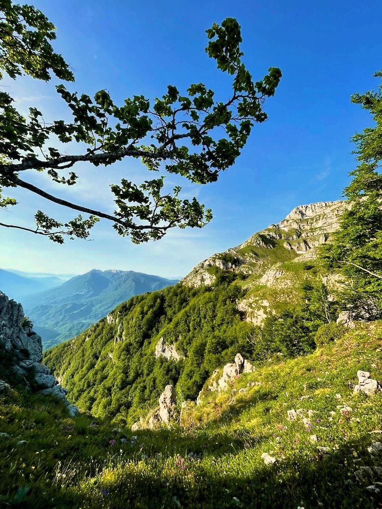 Dettaglio Monti Ernici